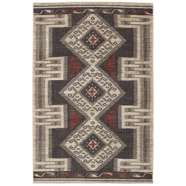 Destinations Hulett Charcoal Area Rug by Mohawk Home