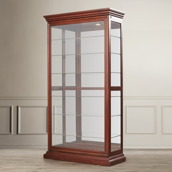 Braeden Lighted Curio Cabinet by Darby Home Co Darby Home Co