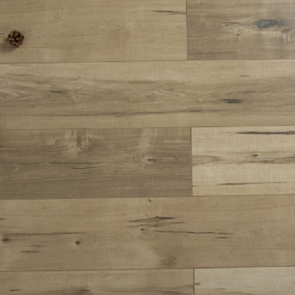 Stratus Sunset 12 x 48 x 12mm Oak Laminate Flooring in Embossed by Islander Flooring