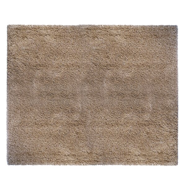 Ultimate Oatmeal Area Rug by Avenue 33