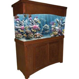 Fish Tanks Aquariums Youll Love