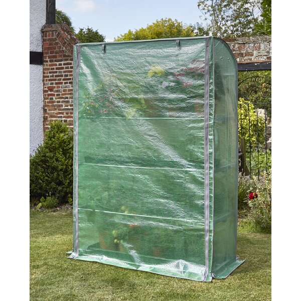 4 Ft. W x 1.6 Ft. D Mini Greenhouse by Pier Surplus