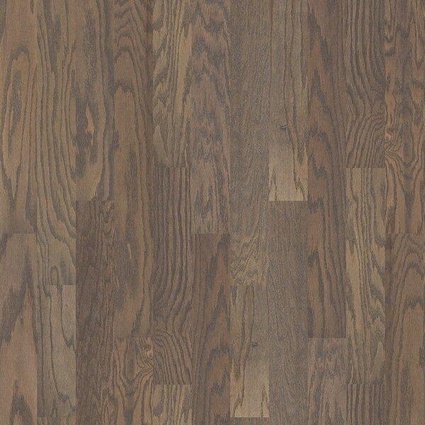 Oak Grove 5 Engineered Red Oak Hardwood Flooring in Gray by Shaw Floors
