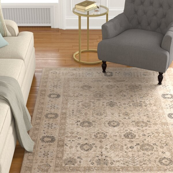 Adelbert Taupe Area Rug by Alcott Hill