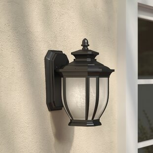 Find for Greenview Metal 1-Light Outdoor Wall Lantern By Three Posts