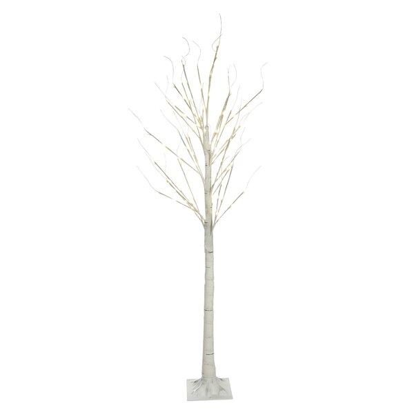 Birch Tree by Hi-Line Gift Ltd.