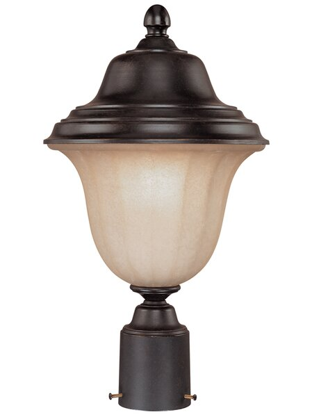 Teminot Outdoor 1-Light Brown Lantern Head by Bloomsbury Market