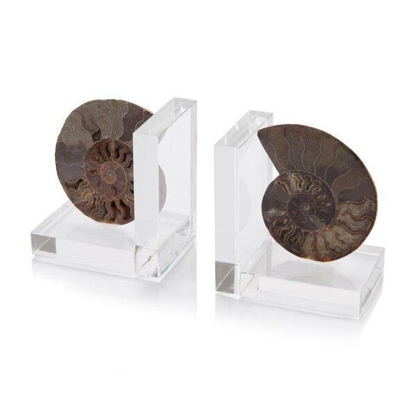 Ammonite Bookends (Set of 2) by John-Richard
