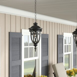 Affordable Price Appalachian 1-Light Outdoor Pendant By Astoria Grand