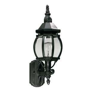 Big Save Mehar 1-Light Glass Shade Outdoor Sconce By Beachcrest Home