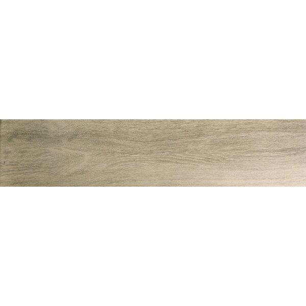 Angeles 9 x 47 Porcelain Wood Look Tile in Cliff by Emser Tile