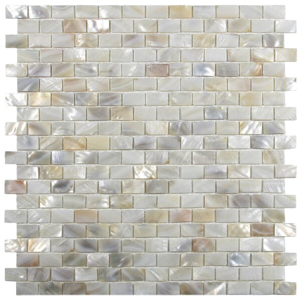 Atlantic 1 x 2 Seashell Mosaic Tile in Cream by CNK Tile