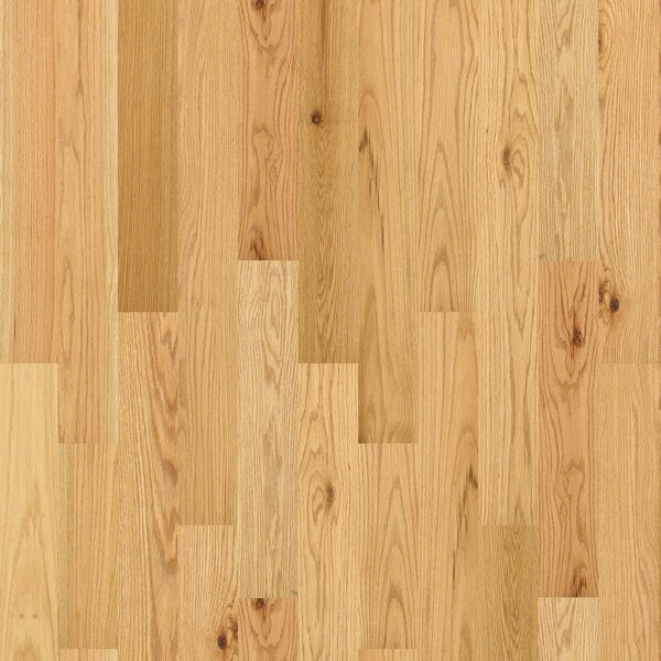 Chico 4 Solid Oak Hardwood Flooring in Light by Shaw Floors
