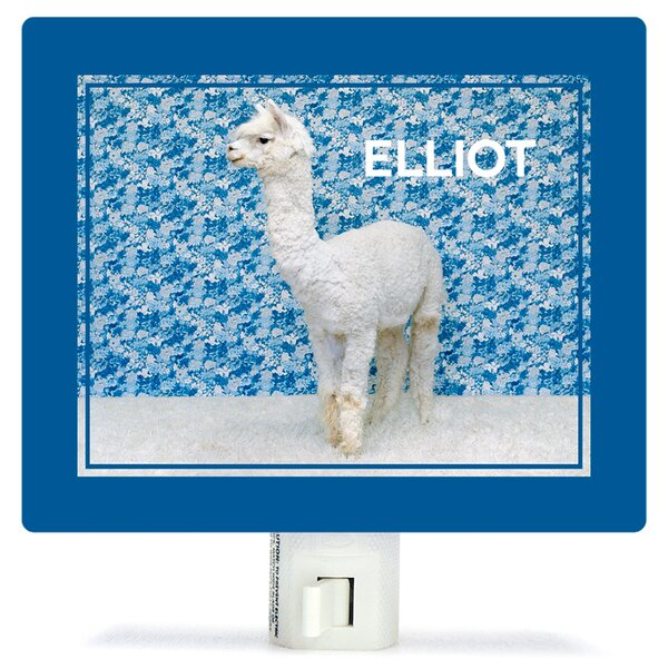 Llama On Blue by Catherine Ledner Personalized Canvas Night Light by Oopsy Daisy