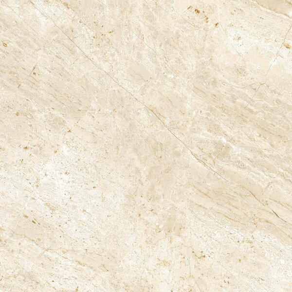 Peyton 18 W x 18  Porcelain Field Tile in Off-White by Parvatile