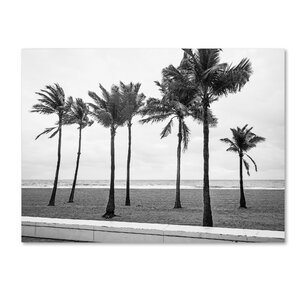 'Florida BW Beach Palms' by Preston Photographic Print on Wrapped Canvas by Trademark Fine Art