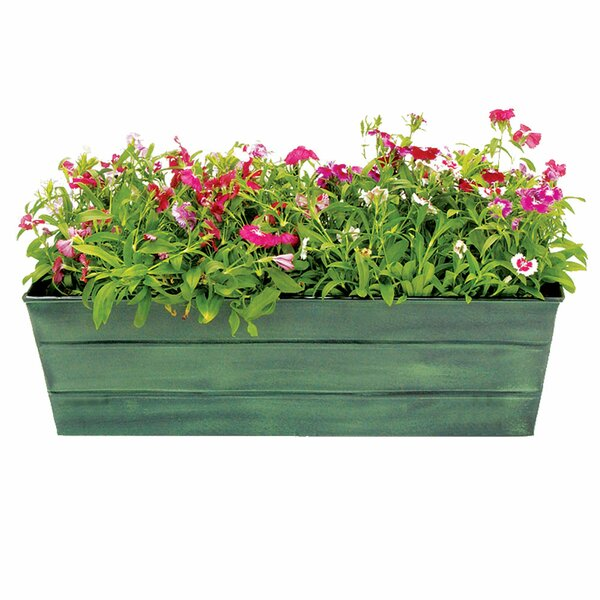 Galvanized Window Box Planter by ACHLA