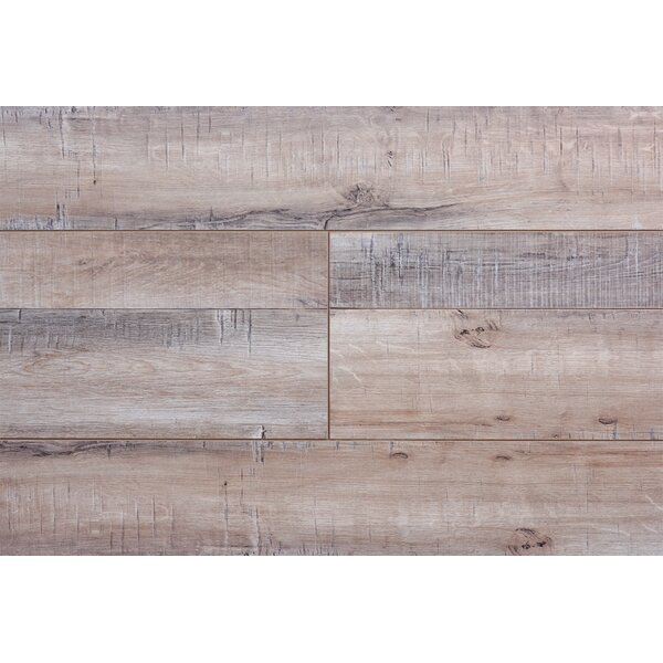 Barnwood Country 8 x 72 x 12.3mm Walnut Laminate Flooring by Serradon