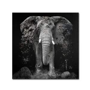 The Disappearance of the Elephant by Erik Brede Graphic Art on Wrapped Canvas by Trademark Fine Art