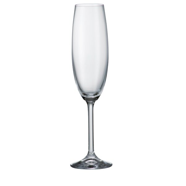 Gastro 7.45 Oz. Champagne Flute (Set of 6) by Crystalite Bohemia