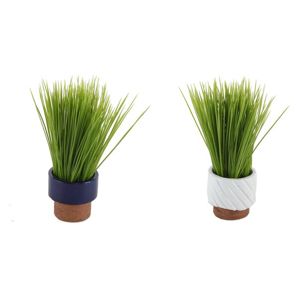 2 Piece Navy Reverse Desktop Succulent Plant in Pot by Wrought Studio