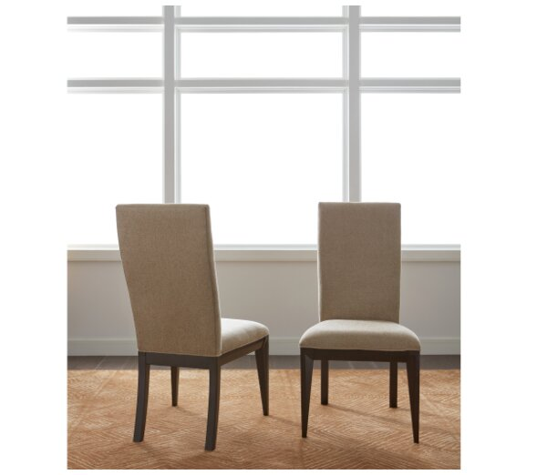 Coletta Side Chair In Milk Chocolate (Set Of 2) By World Menagerie