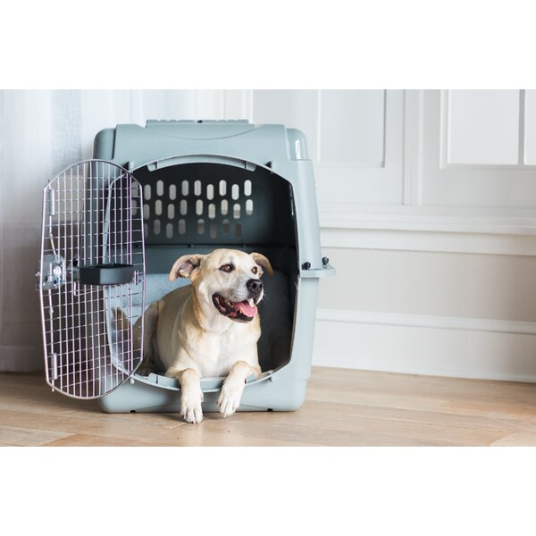 Sky Vault Door Yard Kennel by Petmate