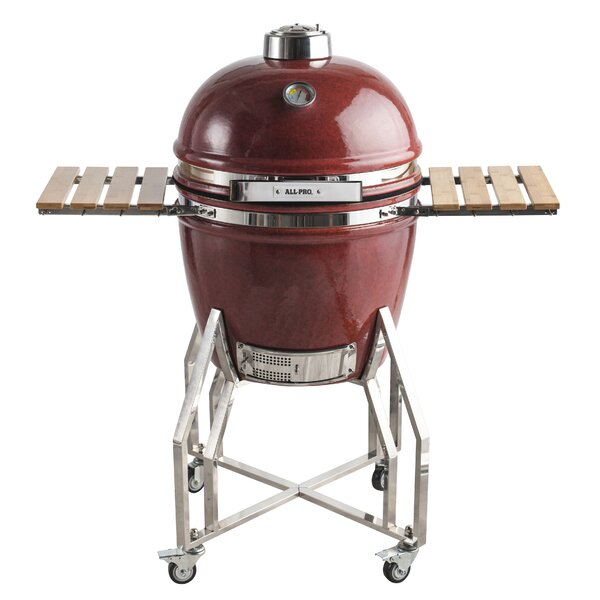 14 Intermediate Series Backyard Cooker Charcoal Grill by All-Pro