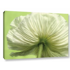 Frilly Petals Photographic Print on Wrapped Canvas by House of Hampton