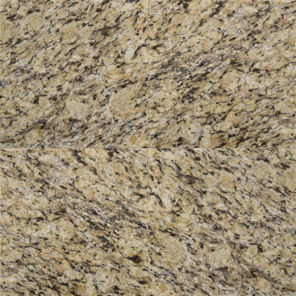 12 x 12 Granite Field Tile in Amber Yellow by MSI