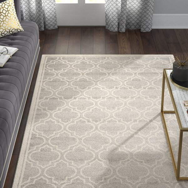 Maritza Gray/Ivory Indoor/Outdoor Area Rug by Willa Arlo Interiors