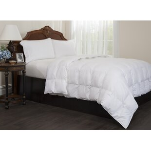 Maxi Down Alternative Comforter By Right Choice Bedding
