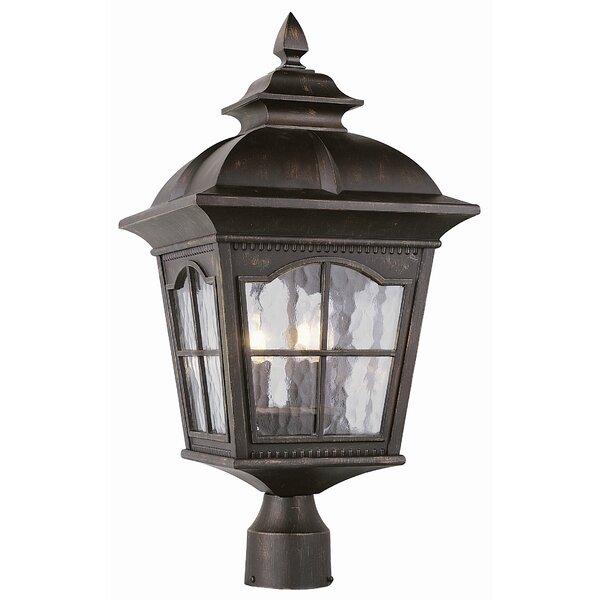 Freeborn 3-Light Lantern Head by Darby Home Co