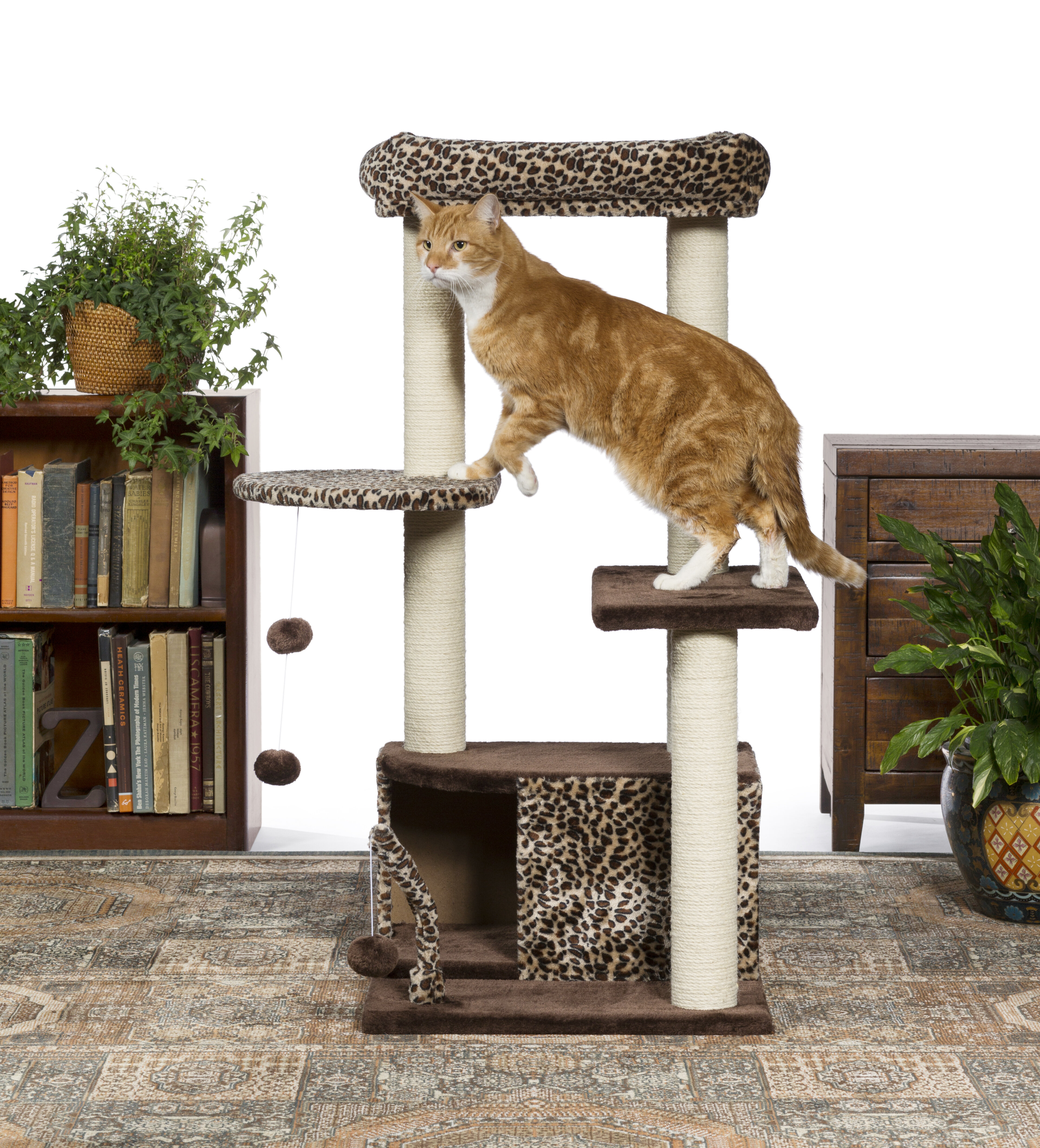 product today wood scots free pine inch armarkat cat premium supplies furniture overstock shipping tree pet