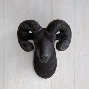 Rocky Faux Taxidermy Ram Head Wall Du00e9cor