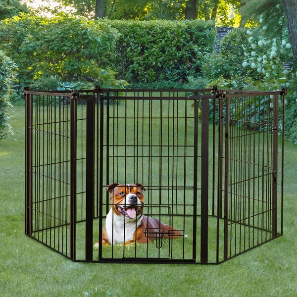 Carlson Pet Indoor Outdoor Super Dog Gate And Play Yard