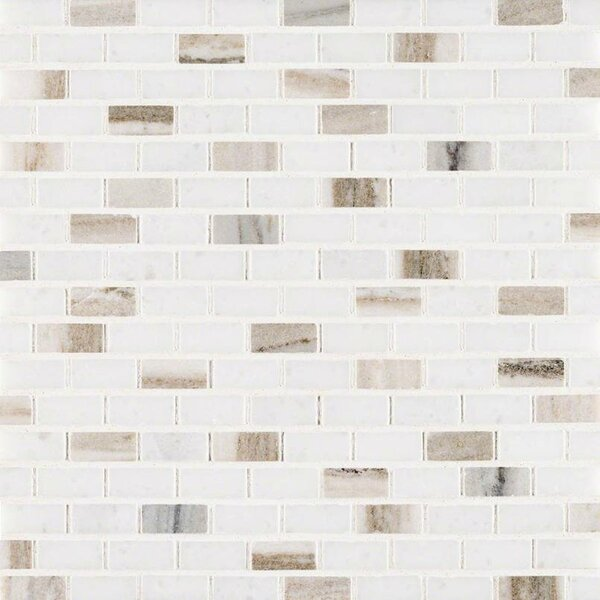 Palisandro Mini Brick Pol Marble Mosaic Tile in Gray/Beige by MSI
