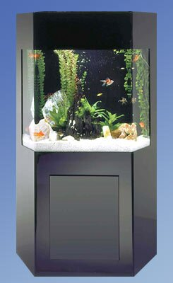 Aqua 50 Gallon Custom Shadow Box Aquarium Kit by Midwest Tropical Fountain