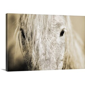 'Camargue Horse' Photographic Print on Wrapped Canvas by Union Rustic