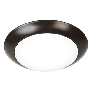 Battery powered ceiling light wayfair save to idea board mozeypictures Images