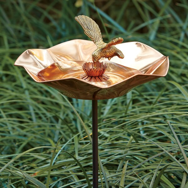 Hummingbird Birdbath by Birch Lane™