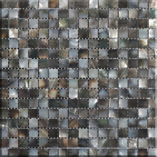 Mesh Mounted 1 x 1 Authentic Polished Seashell Mosaic Tile in Black by Matrix-Z
