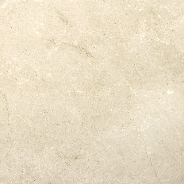 Marble 18 x 18 Tile in Crema Marfil Plus Honed by Emser Tile