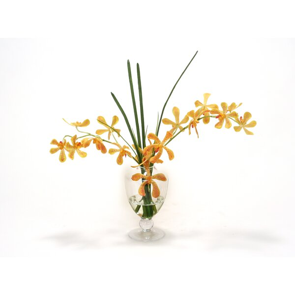 Yellow/Orange Vanda Orchid and Grass in Glass Urn by Distinctive Designs