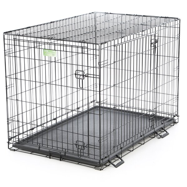 iCrate Double Door Pet Crate by Midwest Homes For Pets