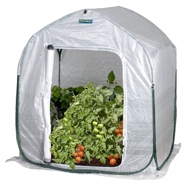 3 Ft. W x 3 Ft. D Mini Greenhouse by Flowerhouse