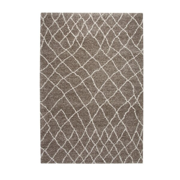 Haverstraw Brown/Ivory Area Rug by Gracie Oaks
