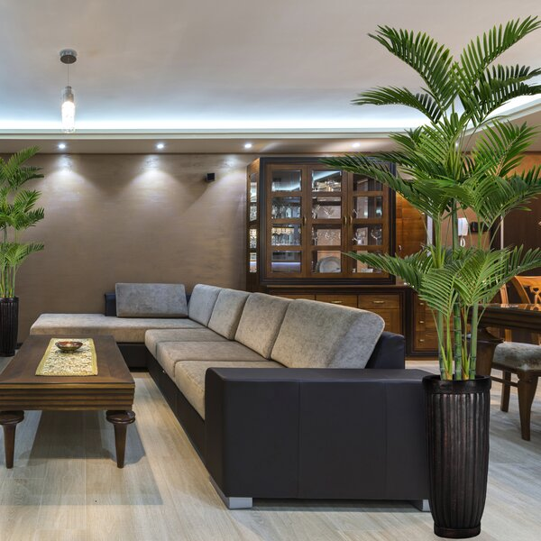 Floor Palm Tree in Planter by Bloomsbury Market