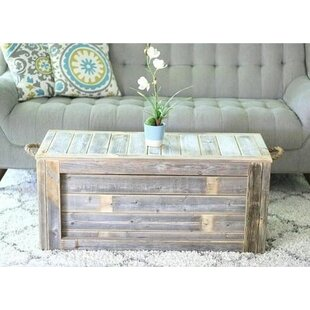 Affordable Price Melson Trunk Coffee Table ByGracie Oaks