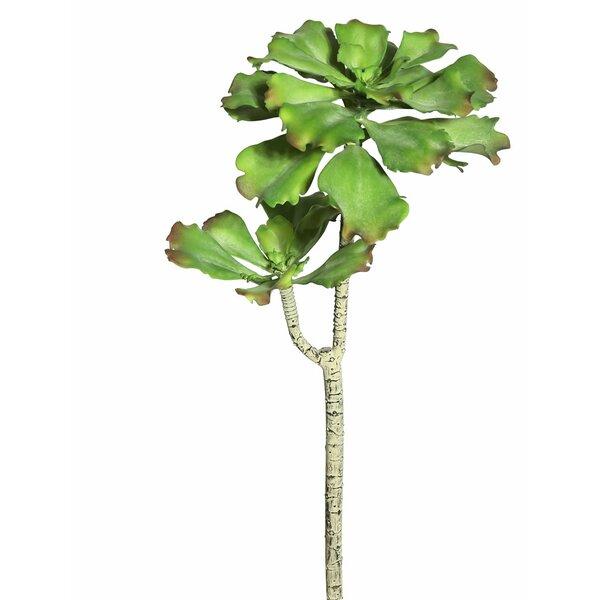Artificial Aquarius Echeveria Stem by Bungalow Rose